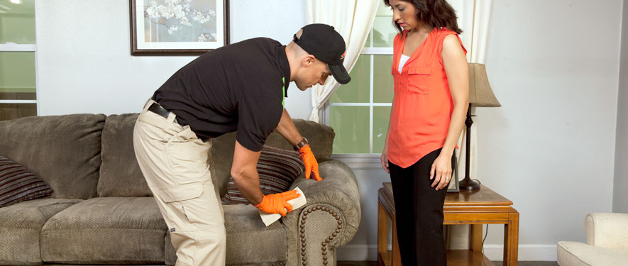 Findlay, OH carpet upholstery cleaning